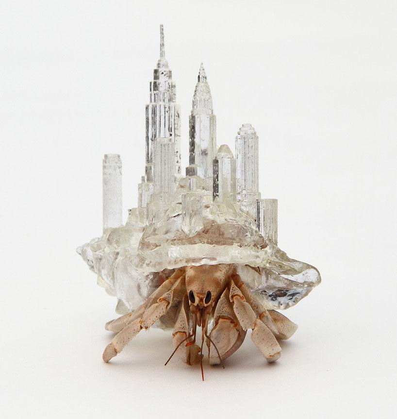 Glass Hermit Crab Shells Aki Inomata Hermit Crab Shells